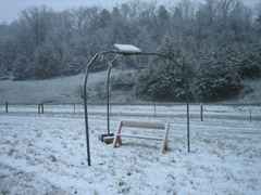 Snowy Tripod